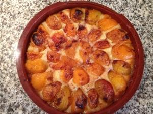 IMG_4475IMG torta crostata di albicocche