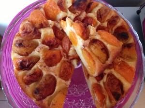 IMG torta crostata di albicocche