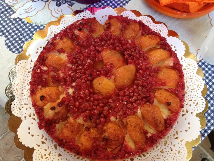 torta ribes