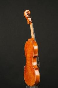 violino sofia vettori